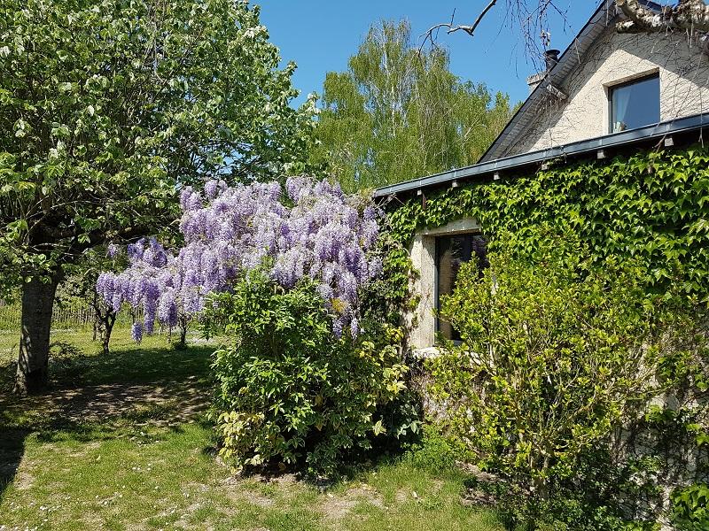 location-gite-jardin-saumur-rosiers-sur-loire-2